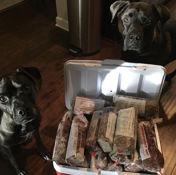 K9sOverCoffee.com   Raw dog food from TEFCO
