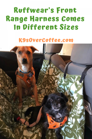 K9sOverCoffee | Ruffwear's Front Range Harness Comes In Different Sizes