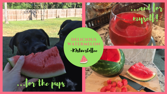 K9sOverCoffee | Delicious Watermelon For The Pups & For Myself
