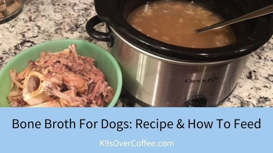 K9sOverCoffee | Bone Broth For Dogs: Recipe & How to Feed