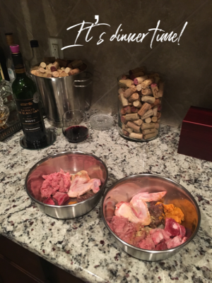 raw dog food recipe for doggie dinner time