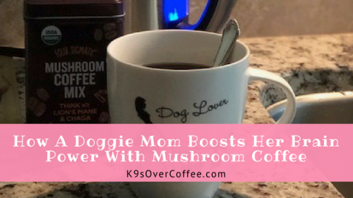 How A Doggie Mom Boosts Her Brain Power With Mushroom Coffee