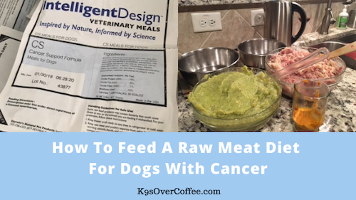 K9sOverCoffee | How to feed a raw meaty diet for dogs with cancer