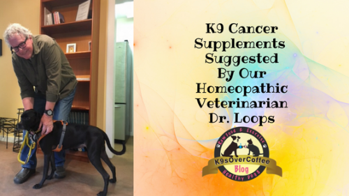 K9sOverCoffee | K9 Cancer Supplements Suggested By Our Homepathic Veterinarian Dr. Loops