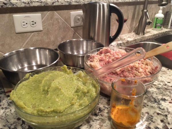 K9sOverCoffee | Pureed veggies, slightly cooked ground turkey, and turmeric paste