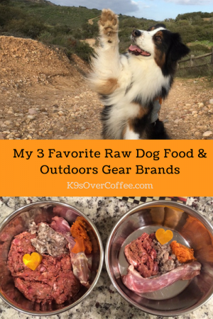 K9sOverCoffee.com | My 3 Favorite Raw Dog Food & Outdoors Gear Brands