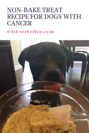 K9sOverCoffee.com | Non-Bake Treat Recipe For Dogs With Cancer