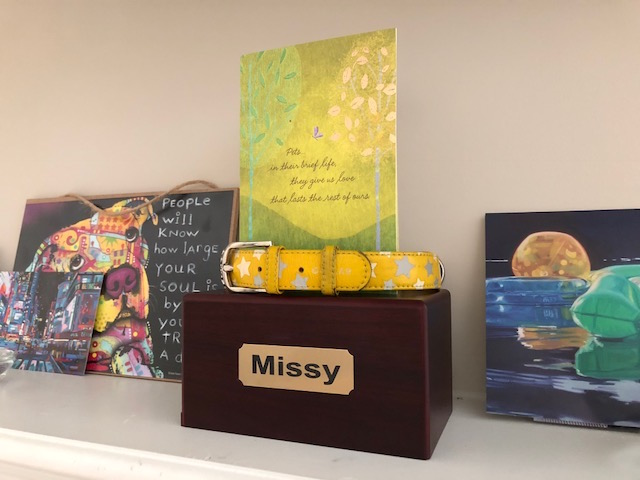 K9sOverCoffee | How I'm Remembering My Late Puppy Missy - Missy's Urn