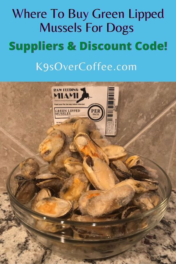 K9sOverCoffee.com | Where to buy green lipped mussels for dogs - suppliers and discount codes