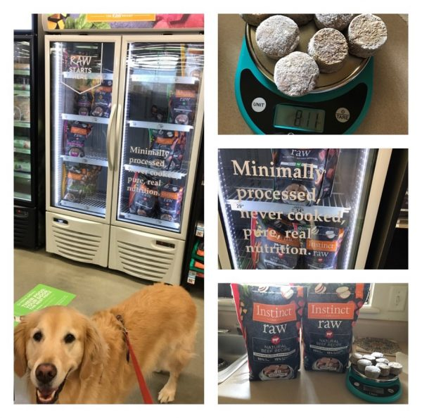 K9sOverCoffee | Golden Retriever Lucy shopping for her first premade raw meals