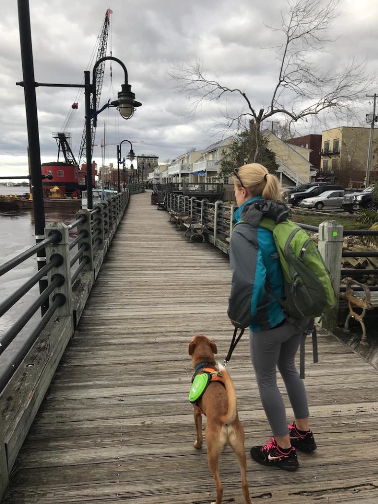 K9sOverCoffee | Wally & I walking the Wilmington boardwalk