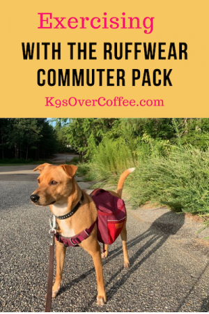 K9sOverCoffee.com | Exercising With The Ruffwear Commuter Pack
