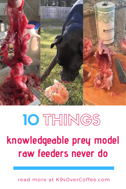 K9sOverCoffee.com | 10 Things Knowledgeable Prey Model Raw Feeders Never Do