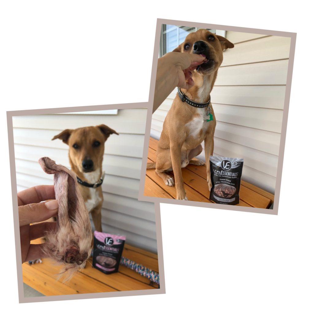 On my list of best single-ingredient dog treats: Freeze-Dried Rabbit Ears & Rabbit Bites from Vital Essentials Are Great Single Ingredient Dog Treats