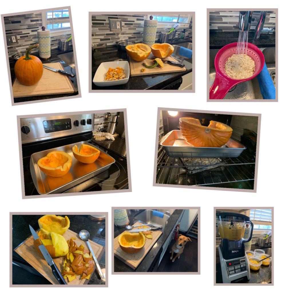 K9sOverCoffee   How I made Wally's fresh pumpkin puree