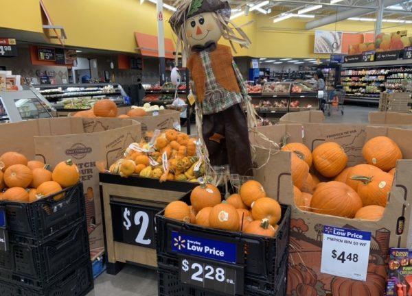 K9sOverCoffee   Pumpkins for sale at Walmart