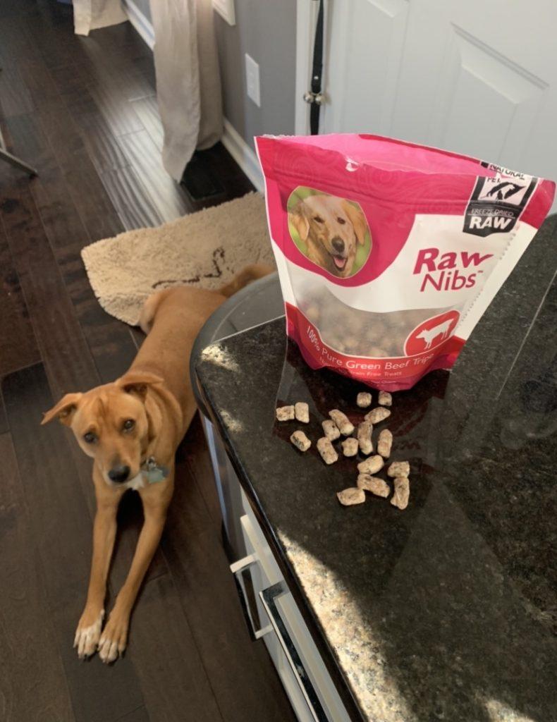 K9sOverCoffee.com   Beef green tripe Raw Nibs treats for dogs