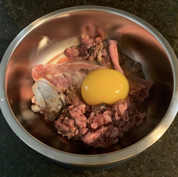 K9sOverCoffee.com | Sample raw dog food featuring a duck egg