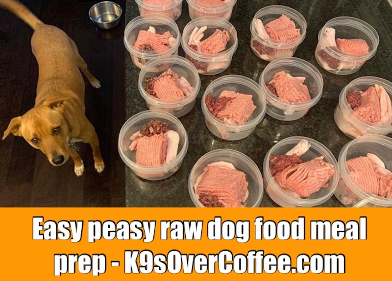 K9sOverCoffee.com | Easy raw dog food meal prep for dogs with allergies