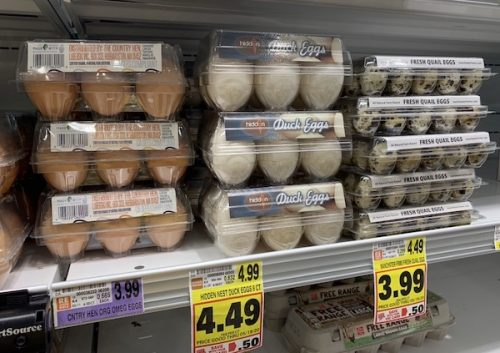K9sOverCoffee.com | My local grocery store Harris Teeter carries chicken eggs, duck eggs, and quail eggs
