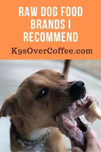 K9sOverCoffee.com   Raw Dog Food Brands I Recommend