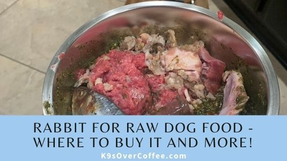 Where to buy rabbit for raw dog food