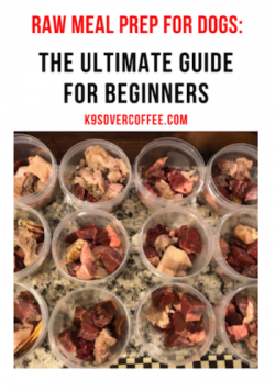 K9sOverCoffee   Raw Meal Prep for Dogs, an ebook about raw dog food