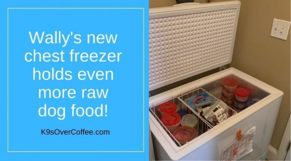 Freezer space makes raw feeding affordable