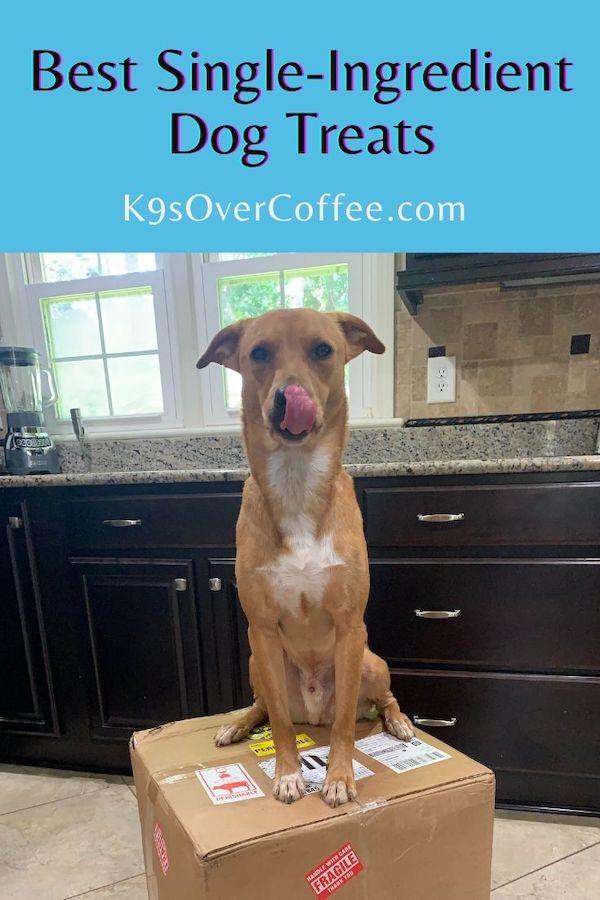 Best Single-Ingredient Dog Treats