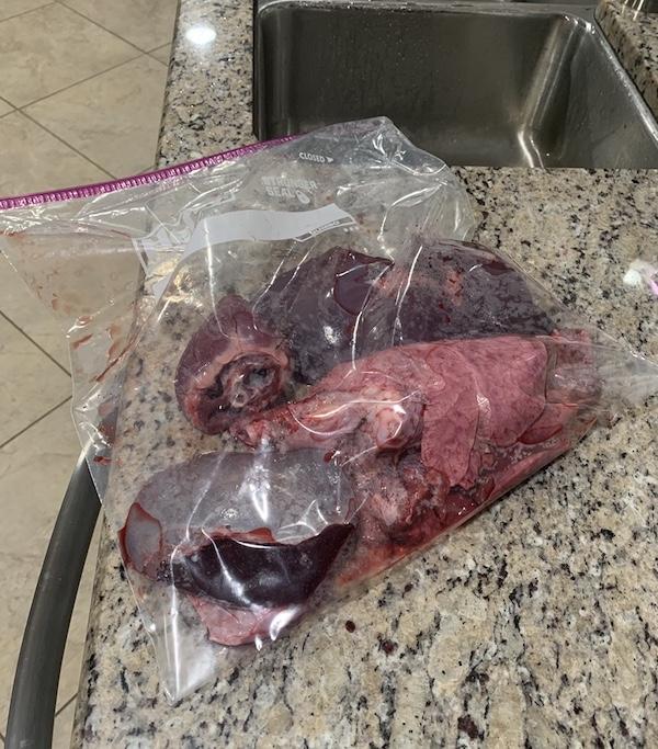K9sOverCoffee.com | The wild, raw venison parts I feed my dog