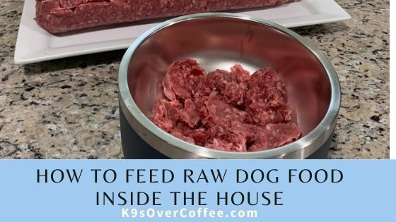 K9sOverCoffee | How To Feed Raw Dog Food Inside The House