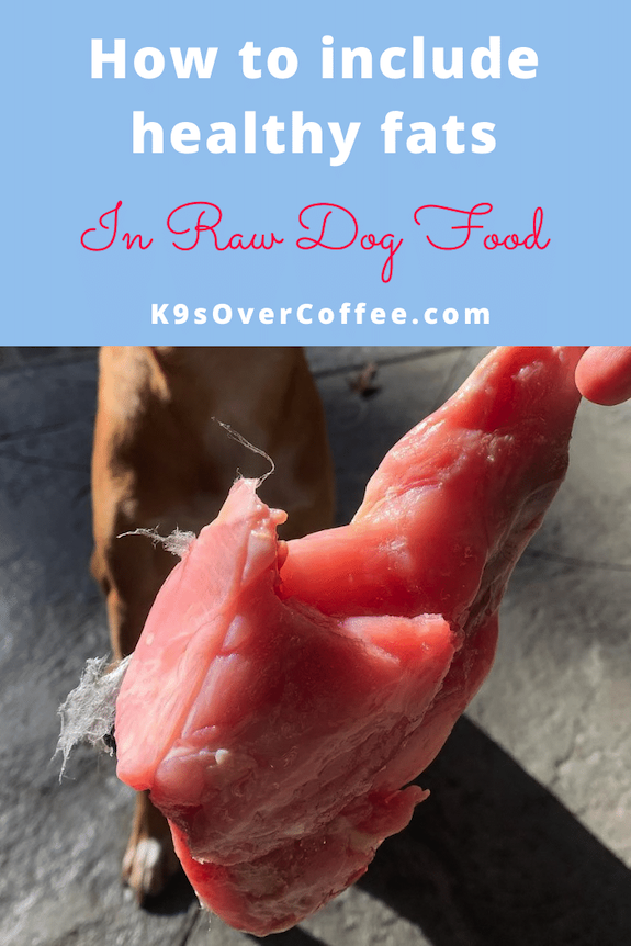 K9sOverCoffee.com | How to include healthy fats in raw dog food