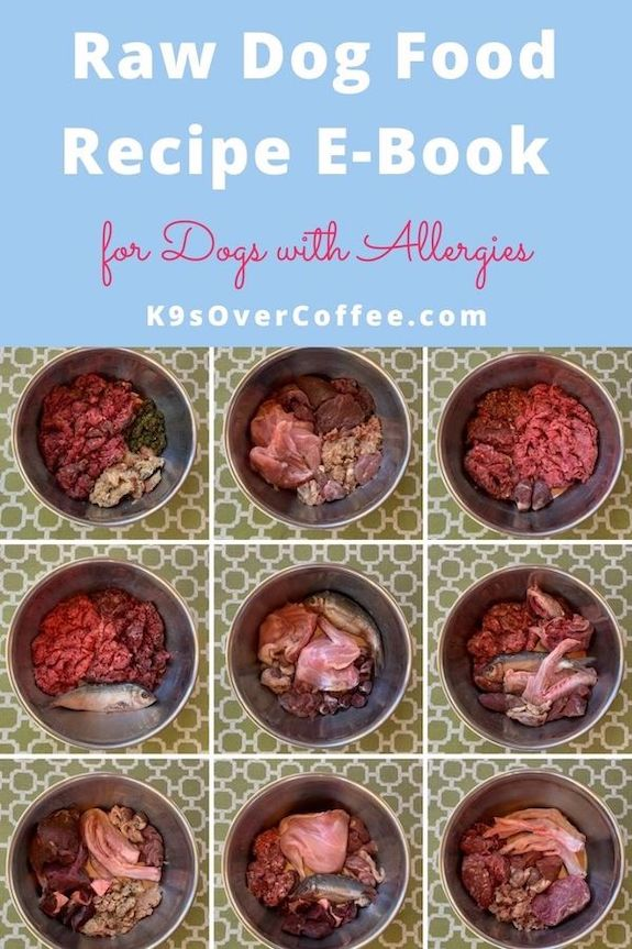 K9sOverCoffee.com | Raw Dog Food Recipe E-Book for Dogs with Allergies