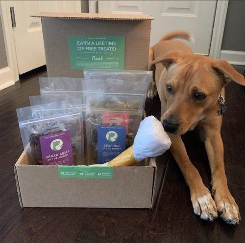 K9sOverCoffee.com | Real Dog's treats and chews made it on my holiday gift guide for raw feeders