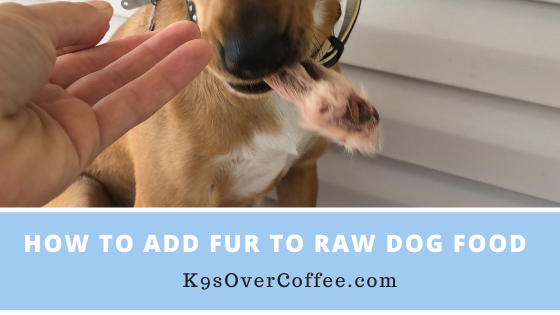 K9sOverCoffee | How to add fur to raw dog food