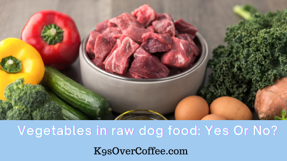 K9sOverCoffee | Vegetables in raw dog food: Yes or No?