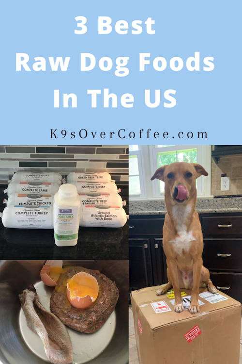 K9sOverCoffee.com | 3 Best Raw Dog Foods In The US That I Recommend