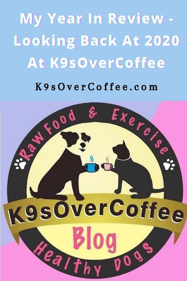 K9sOverCoffee.com | My Year In Review - Looking Back At 2020 At K9sOverCoffee