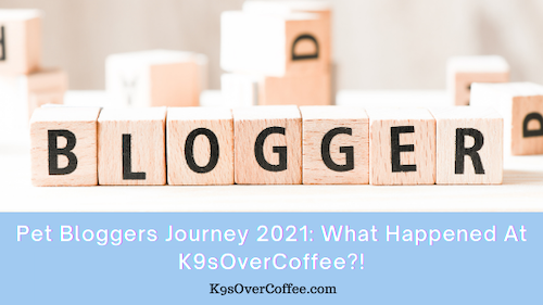 K9sOverCoffee | Pet Bloggers Journey 2021: What Happened At K9sOverCoffee?!