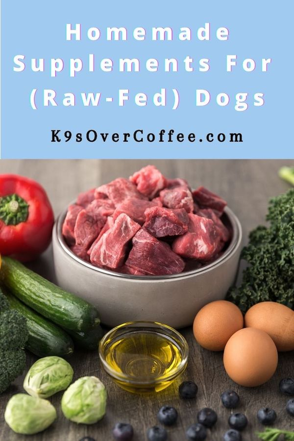 K9sOverCoffee.com | Homemade Supplements for (Raw-Fed) Dogs