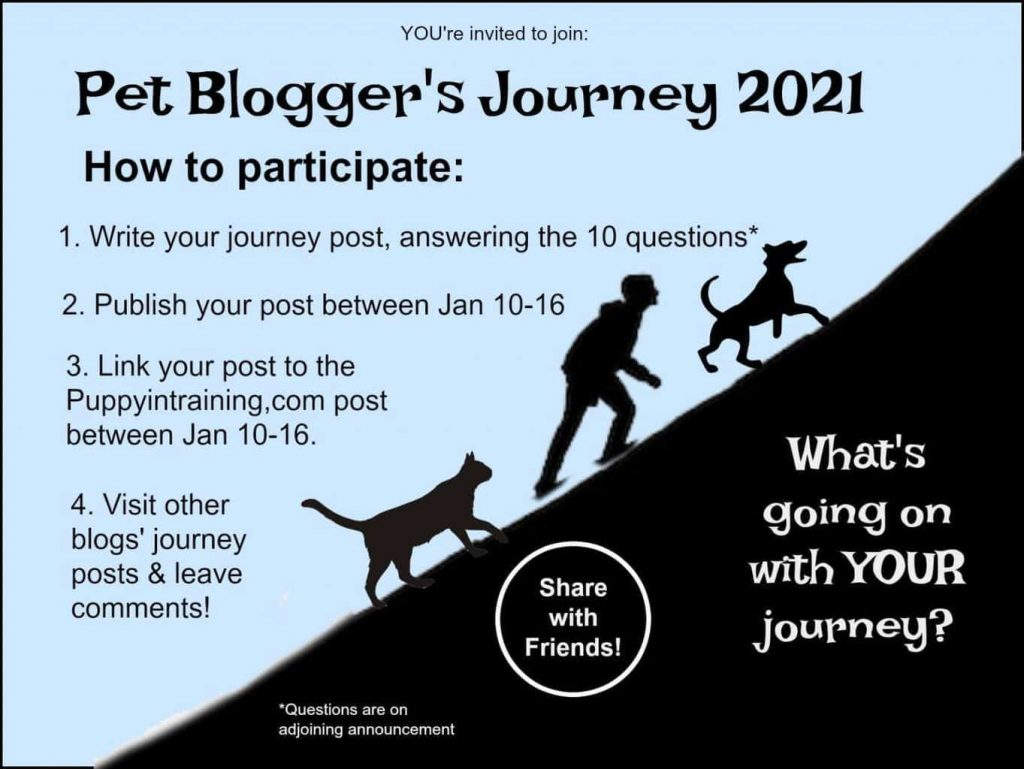 K9sOverCoffee.com | Pet Bloggers Journey 2021 How To Instructions From MyPuppyInTraining.com
