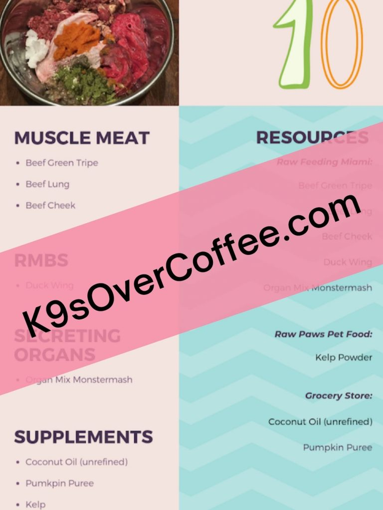 "K9sOverCoffee.com | Sample recipe of the ebook ""20 Raw Meals for Dogs"""