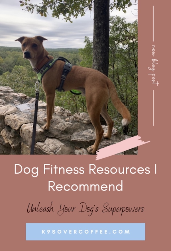 K9sOverCoffee.com | Dog Fitness Resources I Recommend