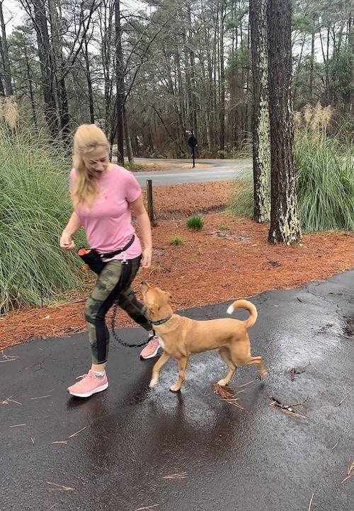 K9sOverCoffee.com | Working on Wally's polite leash walking skills
