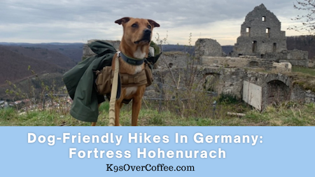 K9sOverCoffee.com | Dog-Friendly Hikes in Germany: Fortress Hohenurach