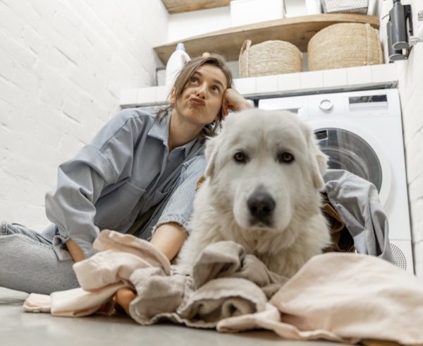 K9sOverCoffee.com | Dogs like to hang out in a cozy laundry room during fireworks