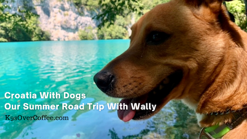K9sOverCoffee | Croatia with dogs - Our summer road trip with Wally