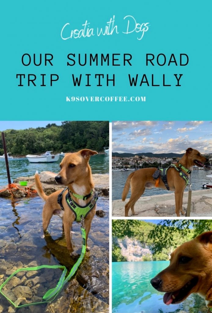 K9sOverCoffee.com | Croatia with dogs - Our summer road trip with Wally