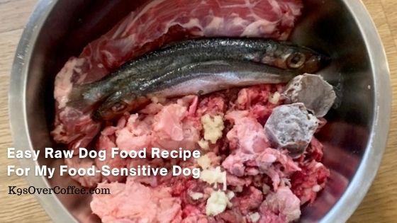 K9sOverCoffee | Easy Raw Dog Food Recipe For My Food Sensitive Dog