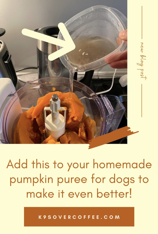 K9sOverCoffee.com   Add this to your homemade pumpkin puree for dogs to make it even better